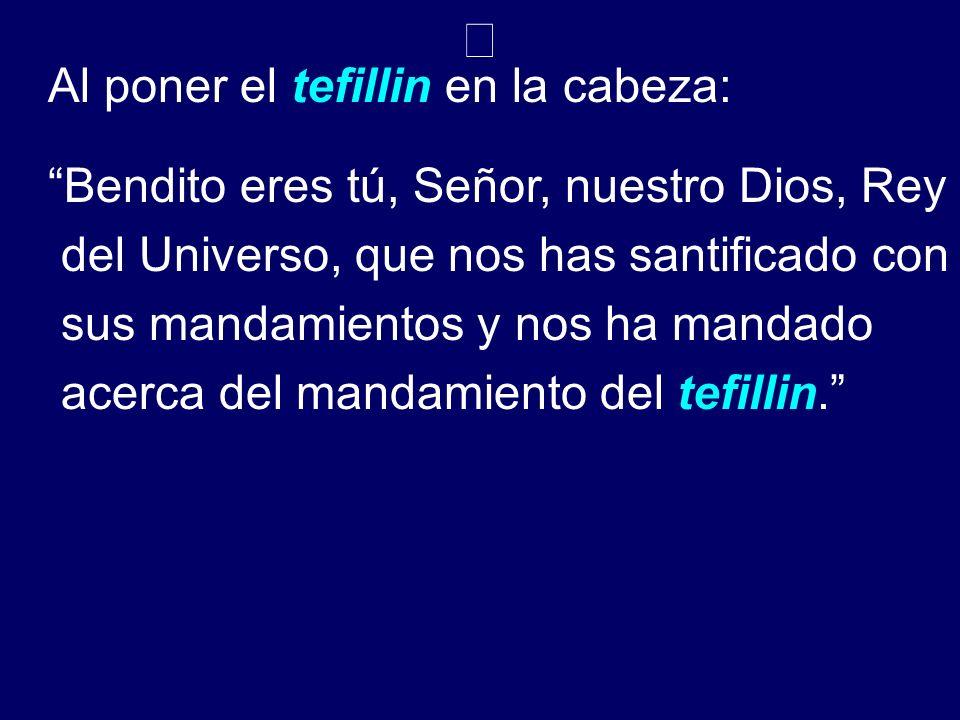 Al poner el tefillin en la cabeza: Bendito eres tú, Señor, nuestro Dios, Rey del Universo, que nos has santificado con sus mandamientos y nos ha manda