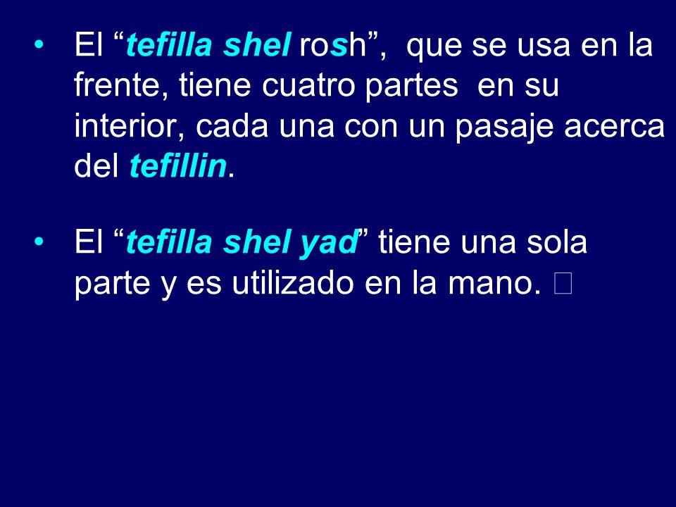 El tefilla shel rosh, que se usa en la frente, tiene cuatro partes en su interior, cada una con un pasaje acerca del tefillin. El tefilla shel yad tie
