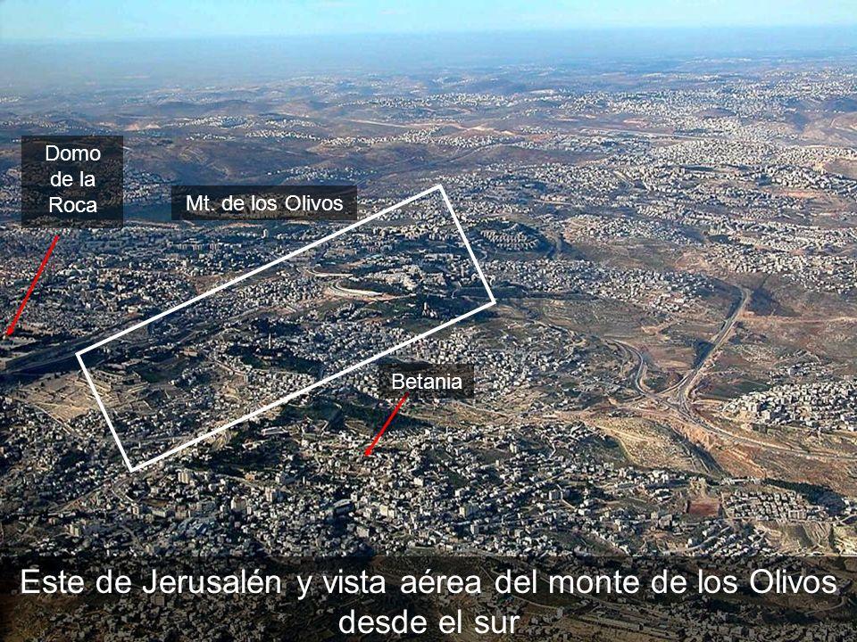 Este de Jerusalén y vista aérea del monte de los Olivos desde el sur Mt. de los Olivos Betania Domo de la Roca