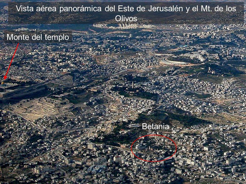 Vista aérea panorámica del Este de Jerusalén y el Mt. de los Olivos Monte del templo Betania