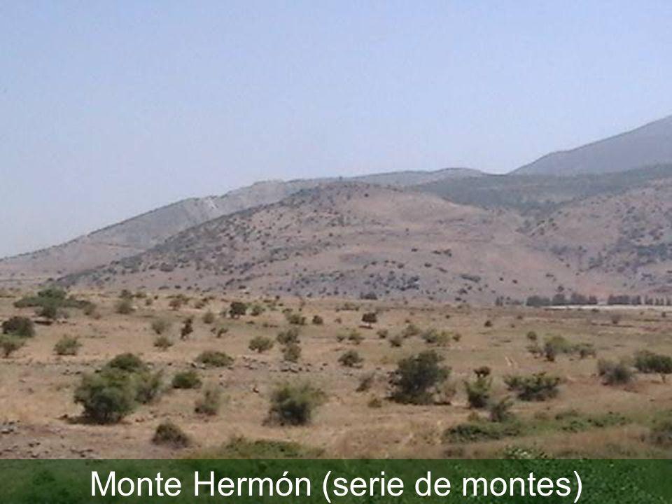 Monte Hermón (serie de montes)