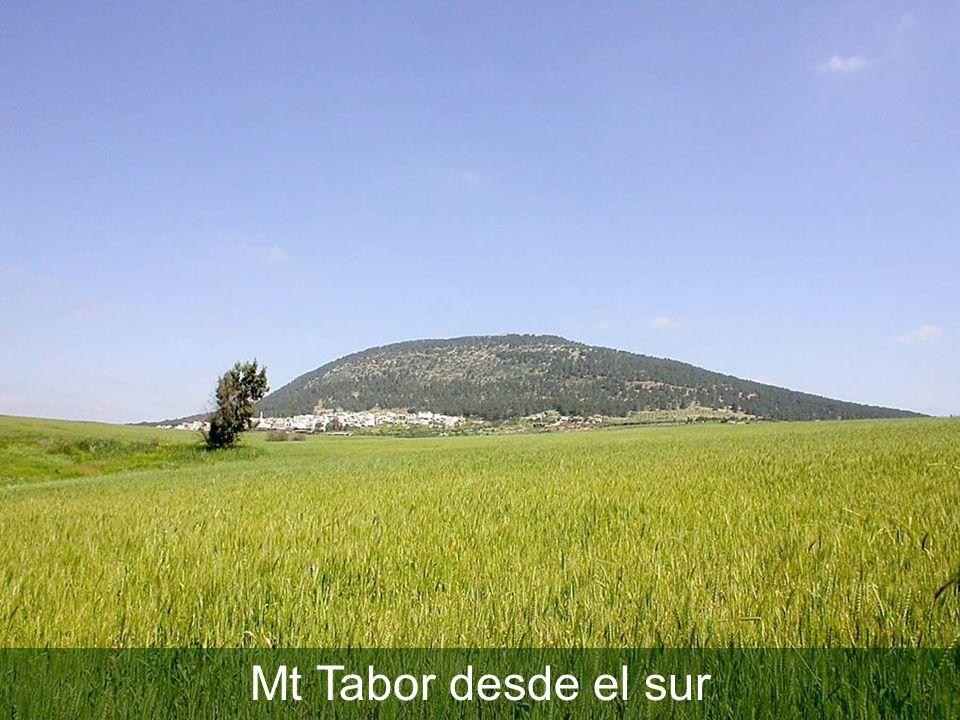 Mt Tabor desde el sur