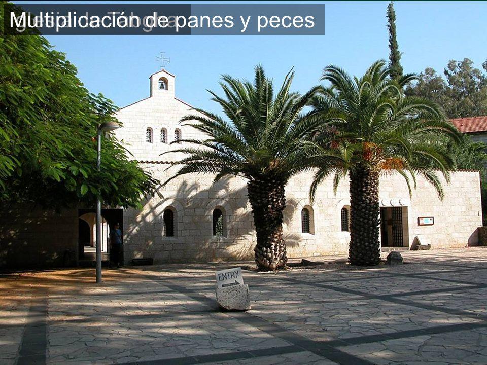 Iglesia de TabghaMultiplicación de panes y peces