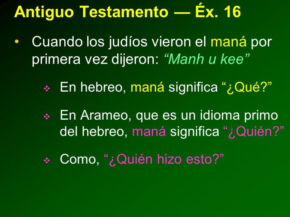 Antiguo Testamento Éx.