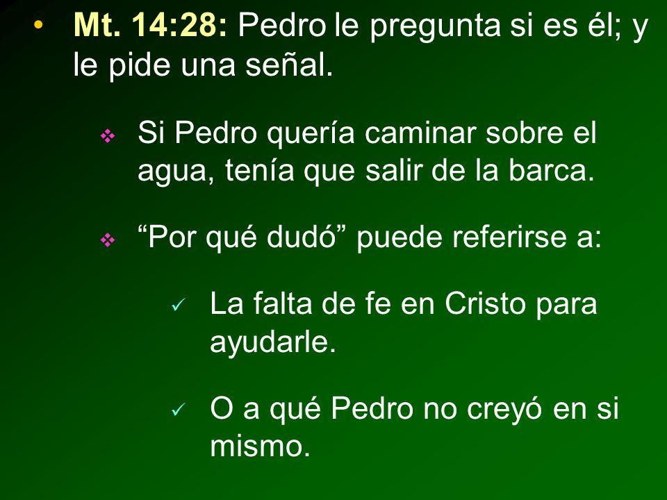 Mt.14:28: Pedro le pregunta si es él; y le pide una señal.