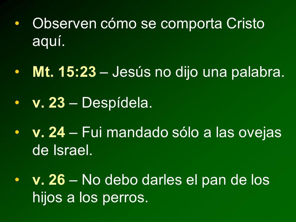 Observen cómo se comporta Cristo aquí.Mt. 15:23 – Jesús no dijo una palabra.