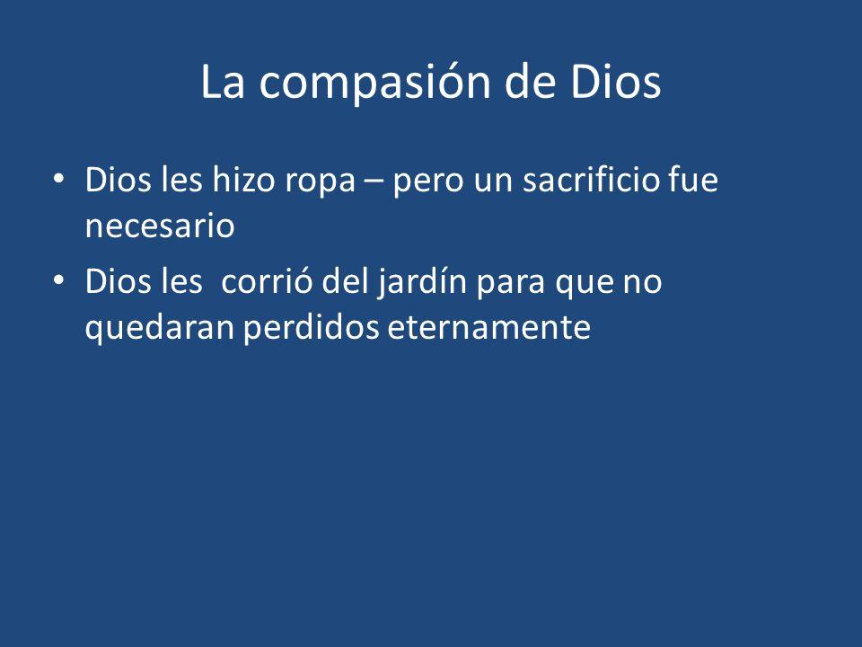 La compasión de Dios Dios les hizo ropa – pero un sacrificio fue necesario Dios les corrió del jardín para que no quedaran perdidos eternamente