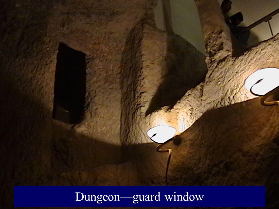 Dungeonguard window