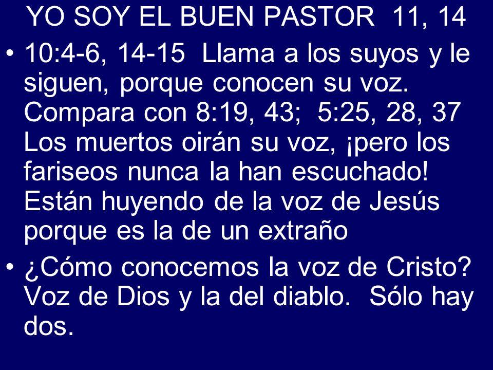 YO SOY EL BUEN PASTOR 11, 14 10:4-6, 14-15 Llama a los suyos y le siguen, porque conocen su voz. Compara con 8:19, 43; 5:25, 28, 37 Los muertos oirán