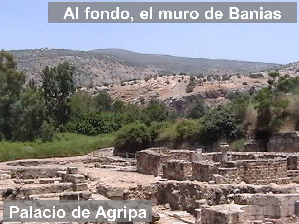 Al fondo, el muro de Banias Palacio de Agripa