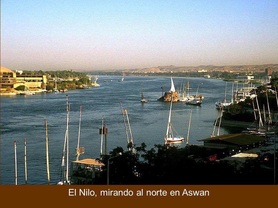 El Nilo, mirando al norte en Aswan