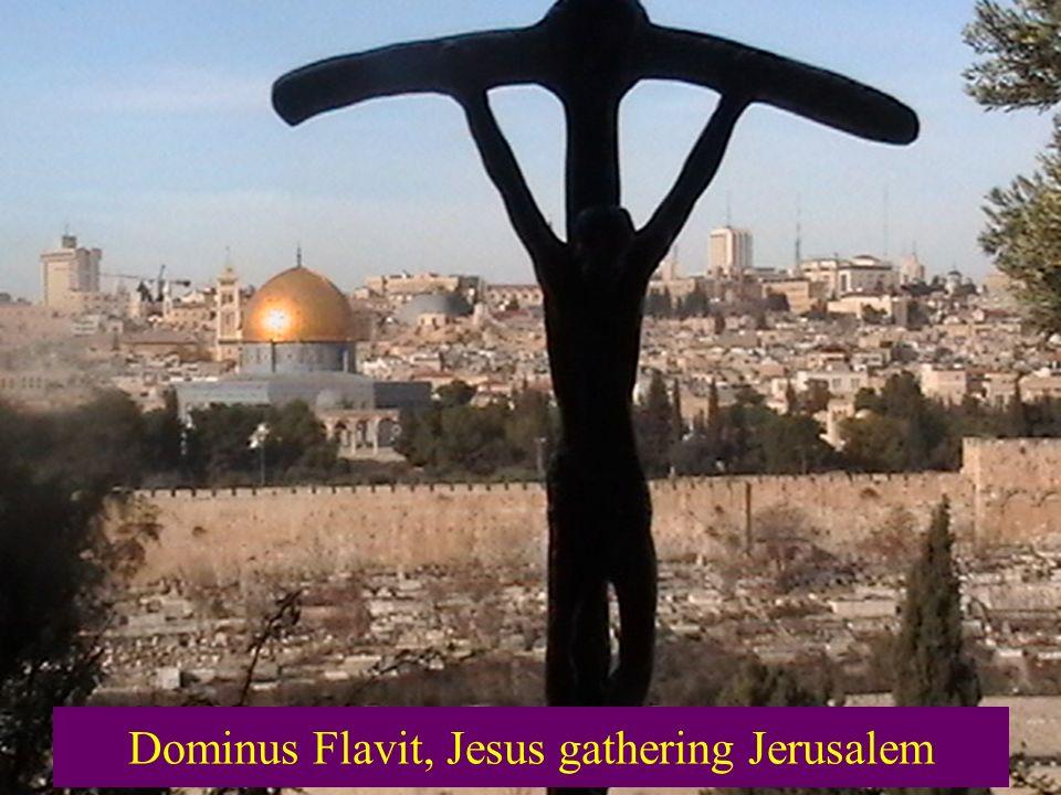 Dominus Flavit, Jesus gathering Jerusalem