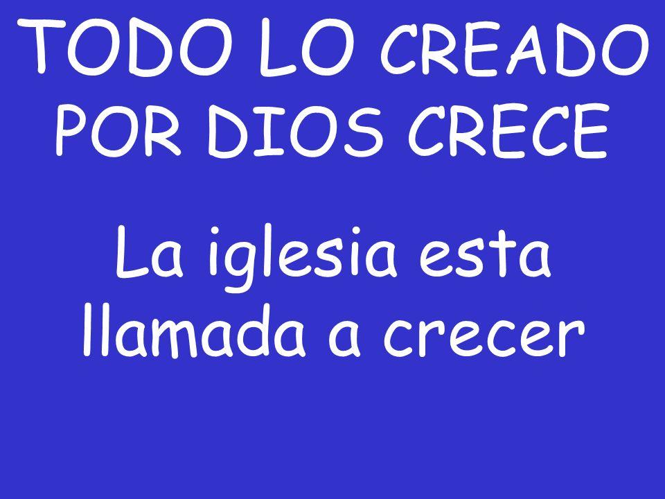 TODO LO CREADO POR DIOS CRECE La iglesia esta llamada a crecer