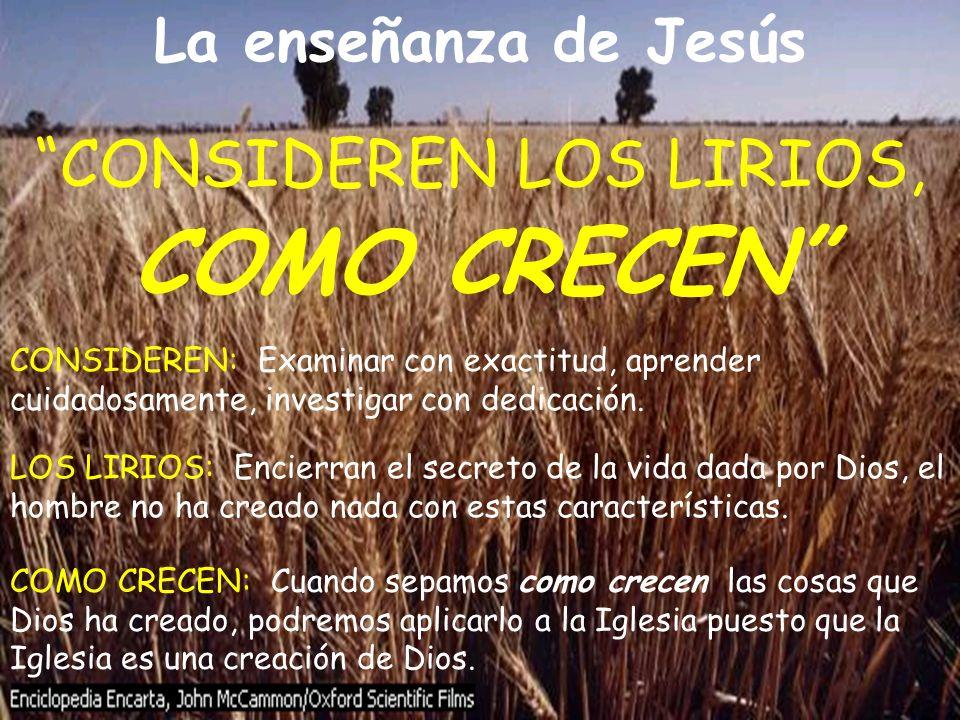 La enseñanza de Jesús COMO CRECEN: Cuando sepamos como crecen las cosas que Dios ha creado, podremos aplicarlo a la Iglesia puesto que la Iglesia es u