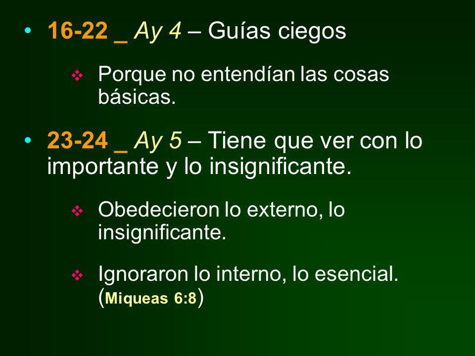 16-22 _ Ay 4 – Guías ciegos Porque no entendían las cosas básicas. 23-24 _ Ay 5 – Tiene que ver con lo importante y lo insignificante. Obedecieron lo