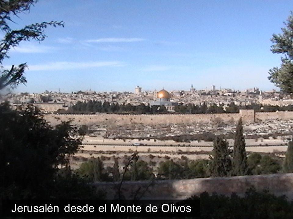 Jerusalén desde el Monte de Olivos