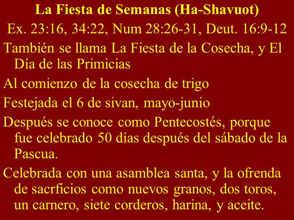 La Fiesta de Semanas (Ha-Shavuot) Ex. 23:16, 34:22, Num 28:26-31, Deut. 16:9-12 También se llama La Fiesta de la Cosecha, y El Día de las Primicias Al