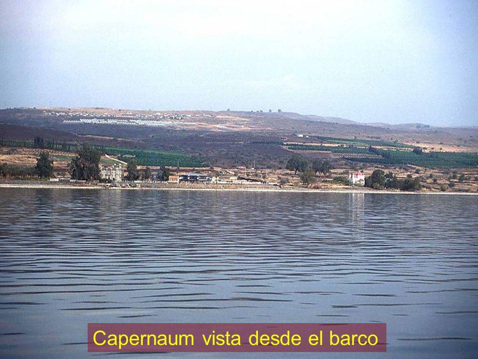 Capernaum vista desde el barco