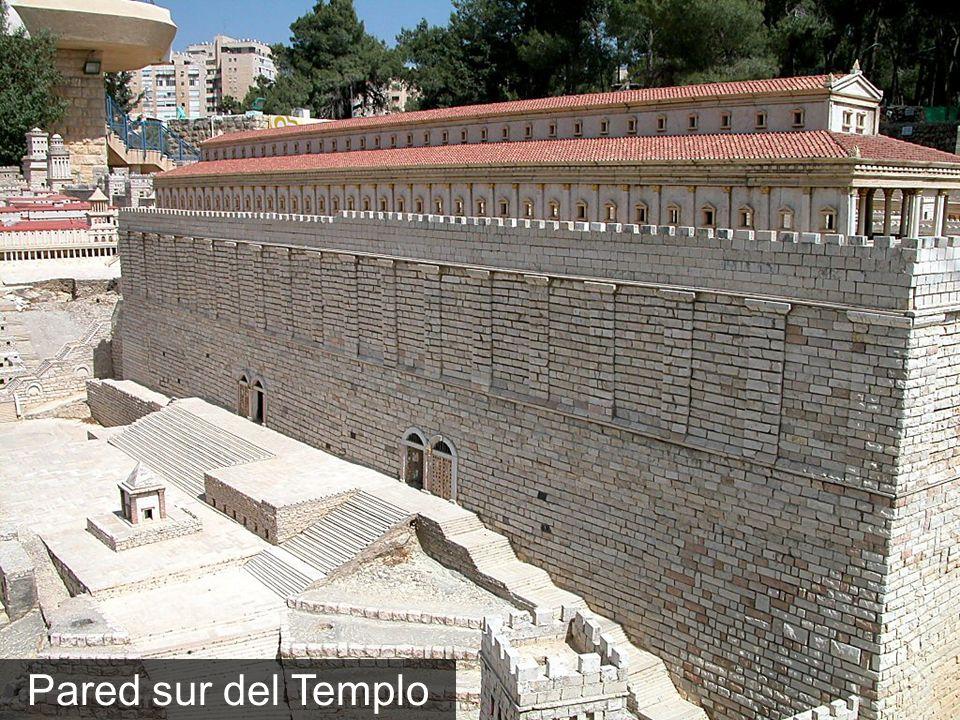 Pared sur del Templo