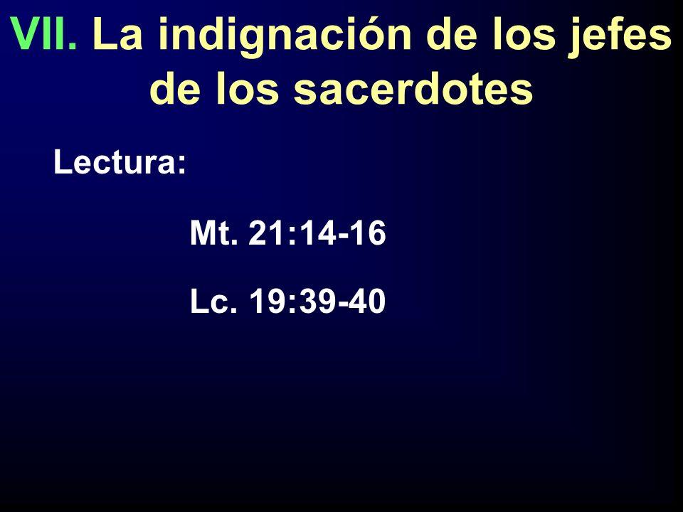 VII. La indignación de los jefes de los sacerdotes Lectura: Mt. 21:14-16 Lc. 19:39-40