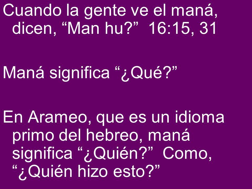 Cuando la gente ve el maná, dicen, Man hu? 16:15, 31 Maná significa ¿Qué? En Arameo, que es un idioma primo del hebreo, maná significa ¿Quién? Como, ¿