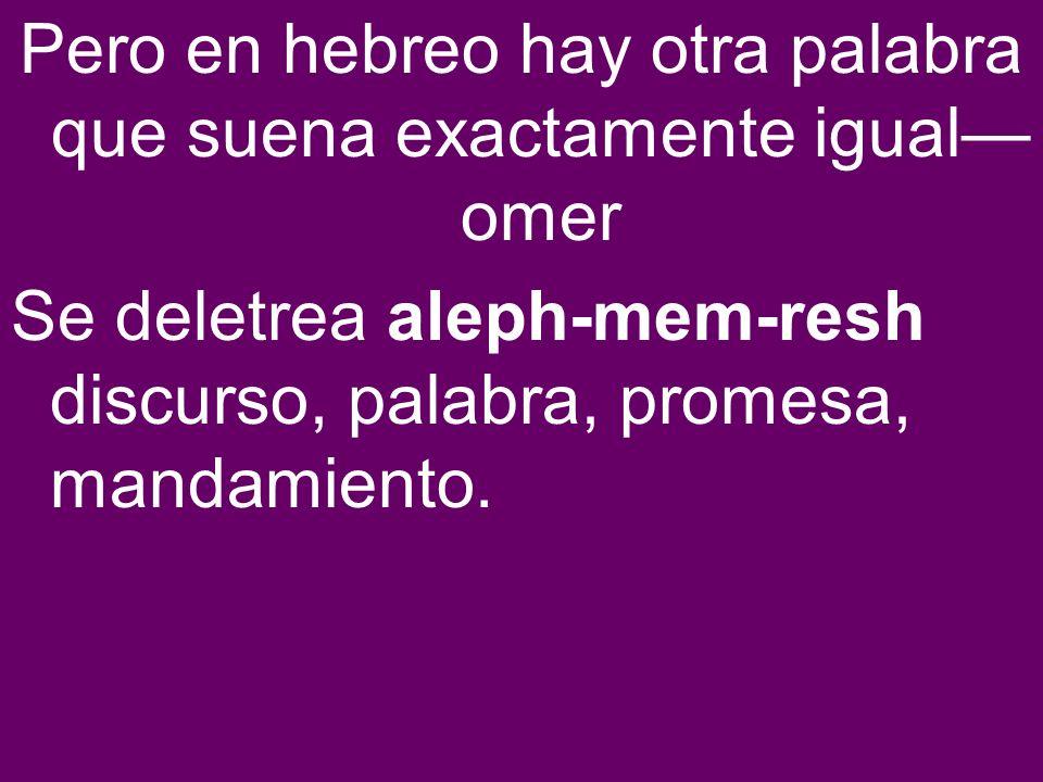 Pero en hebreo hay otra palabra que suena exactamente igual omer Se deletrea aleph-mem-resh discurso, palabra, promesa, mandamiento.