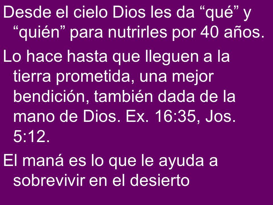 Desde el cielo Dios les da qué y quién para nutrirles por 40 años. Lo hace hasta que lleguen a la tierra prometida, una mejor bendición, también dada
