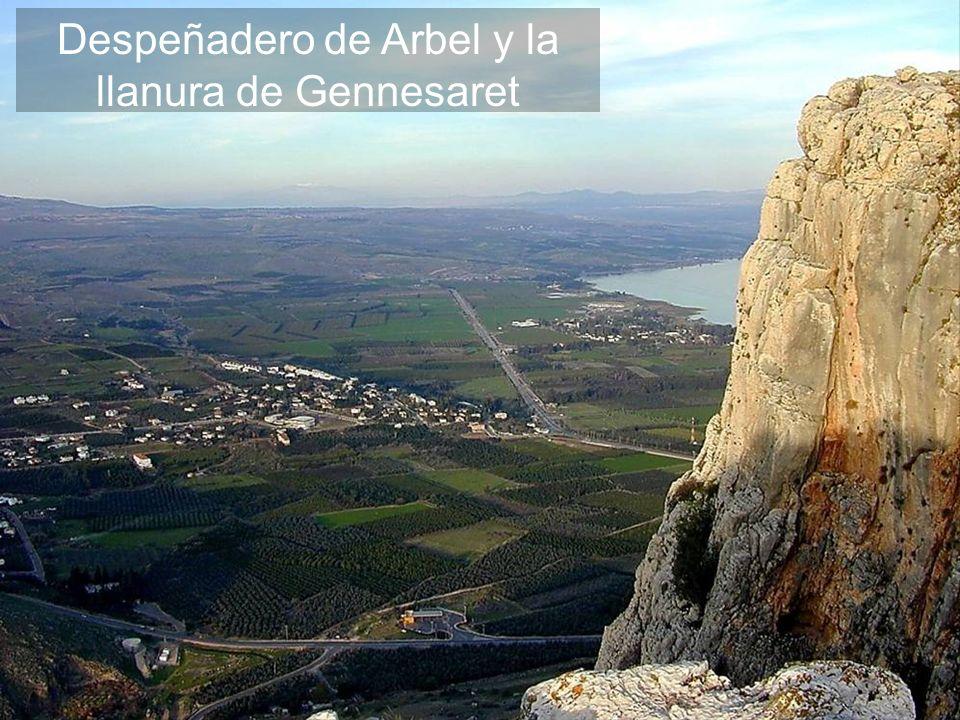 Despeñadero de Arbel y la llanura de Gennesaret