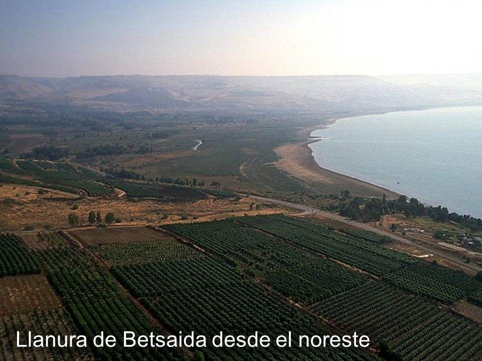 Llanura de Betsaida desde el noreste