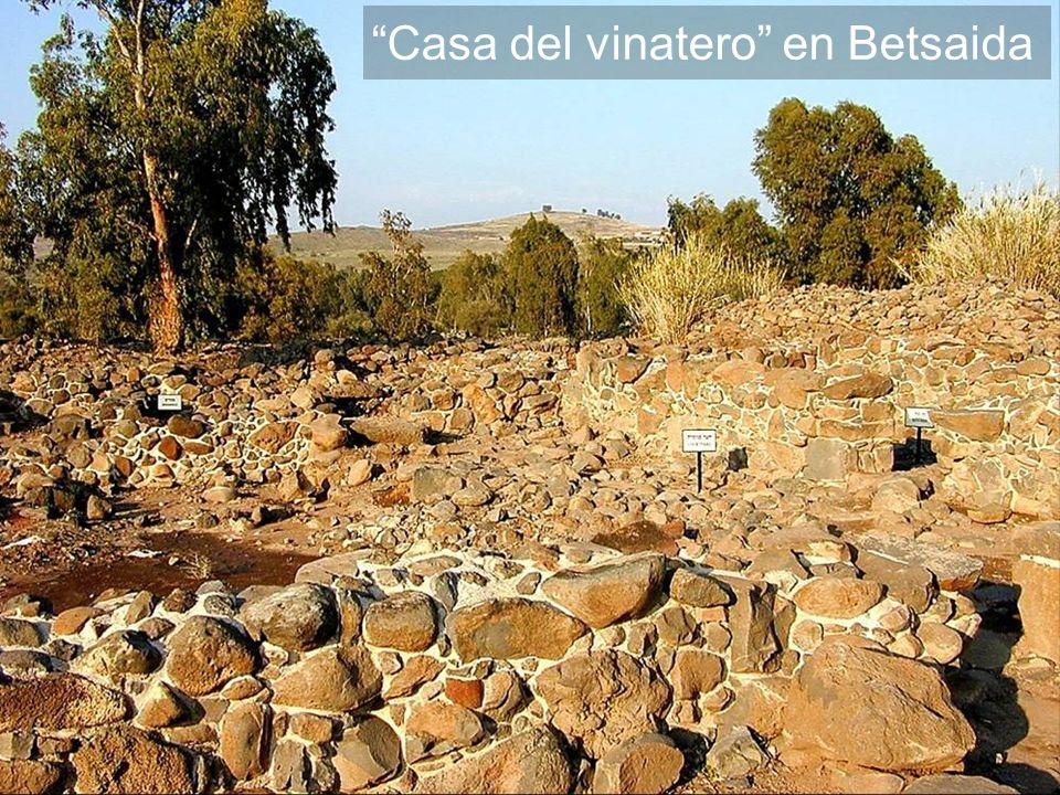Casa del vinatero en Betsaida
