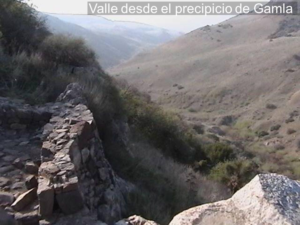 Valle desde el precipicio de Gamla