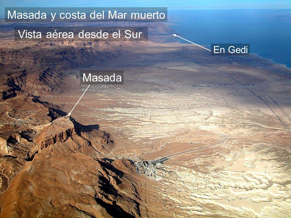 Masada y costa del Mar muerto En Gedi Masada Vista aérea desde el Sur