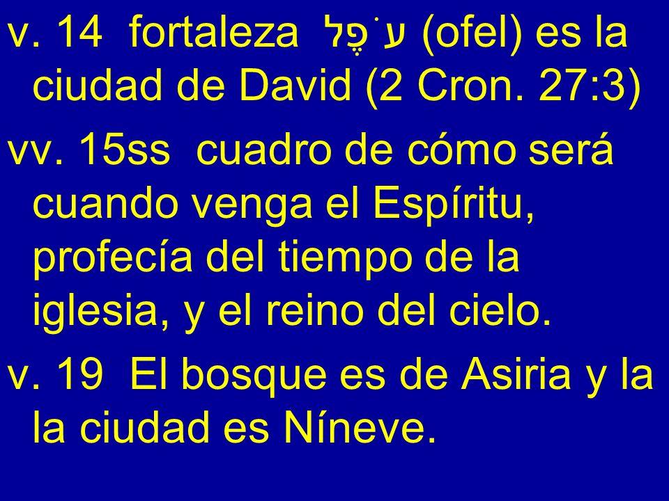 v. 14 fortaleza עֹפֶל (ofel) es la ciudad de David (2 Cron. 27:3) vv. 15ss cuadro de cómo será cuando venga el Espíritu, profecía del tiempo de la igl