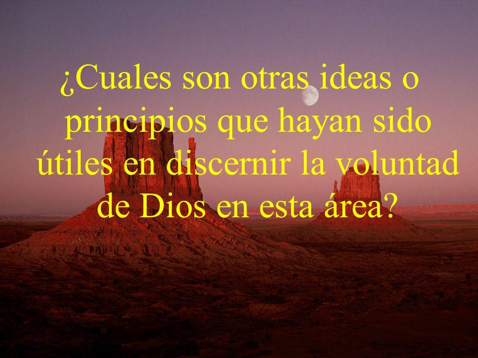 ¿Cuales son otras ideas o principios que hayan sido útiles en discernir la voluntad de Dios en esta área?