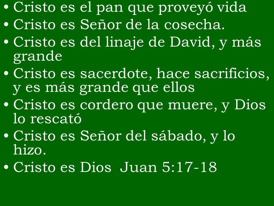 Cristo es el pan que proveyó vida Cristo es Señor de la cosecha. Cristo es del linaje de David, y más grande Cristo es sacerdote, hace sacrificios, y