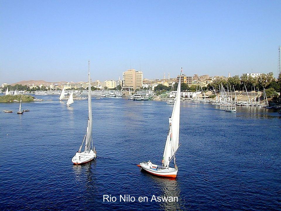Rio Nilo en Aswan