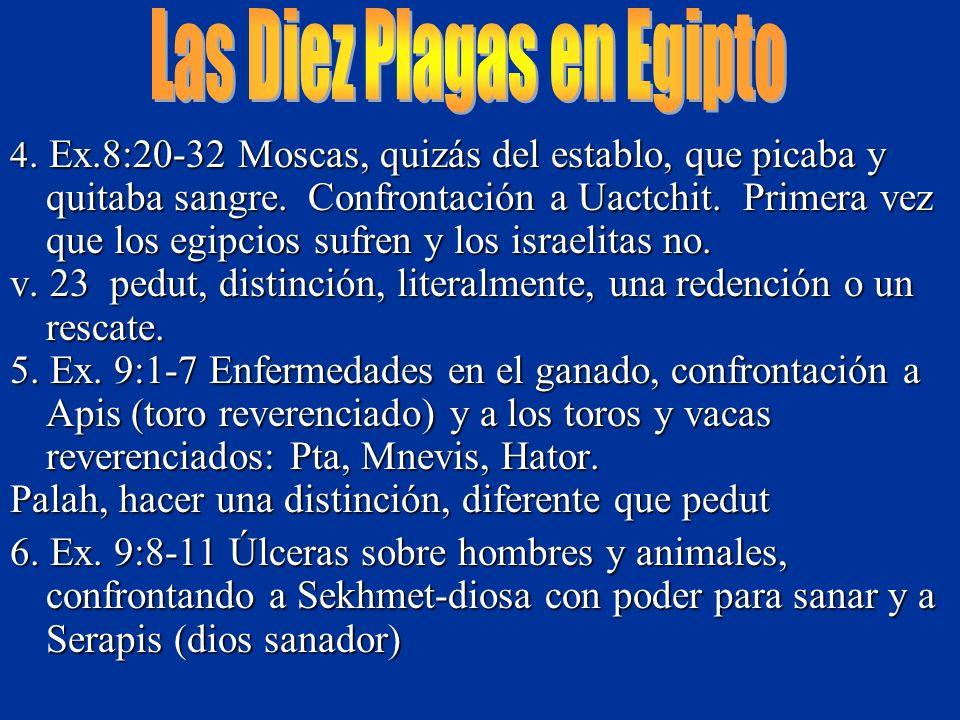 4. Ex.8:20-32 Moscas, quizás del establo, que picaba y quitaba sangre. Confrontación a Uactchit. Primera vez que los egipcios sufren y los israelitas