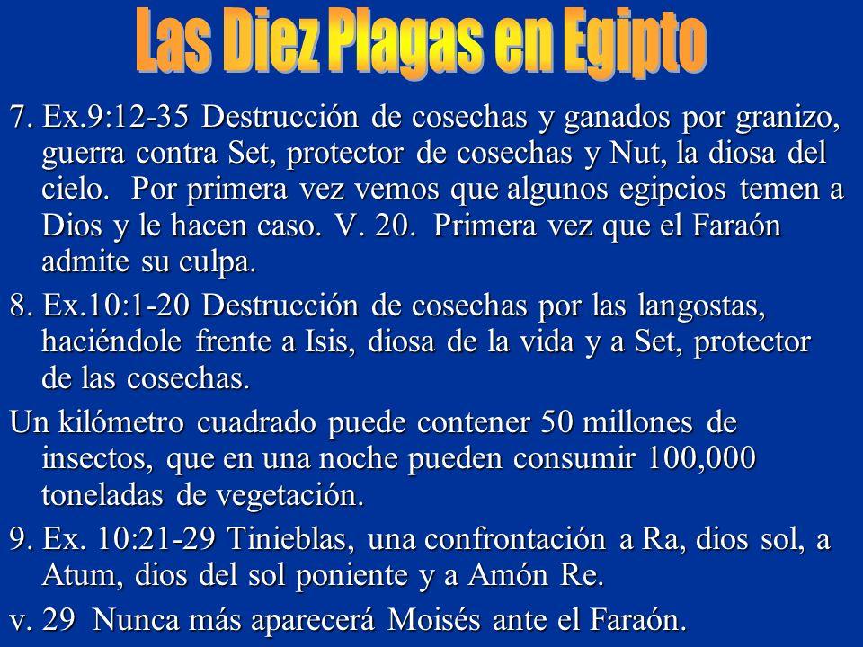 7. Ex.9:12-35 Destrucción de cosechas y ganados por granizo, guerra contra Set, protector de cosechas y Nut, la diosa del cielo. Por primera vez vemos