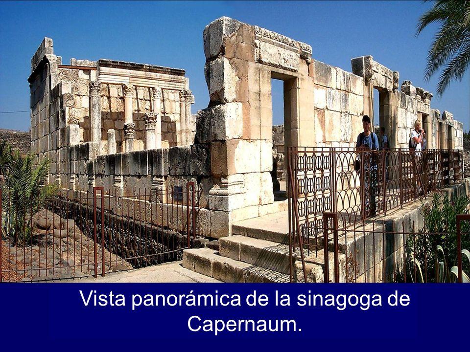 Vista panorámica de la sinagoga de Capernaum.