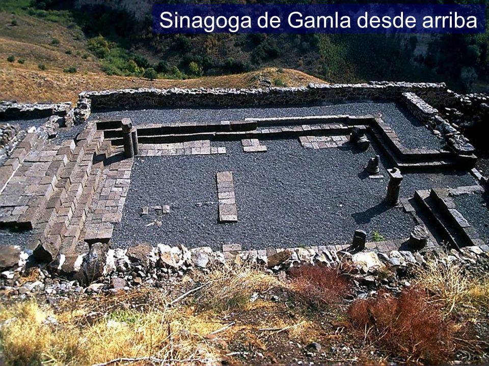 Sinagoga de Gamla desde arriba