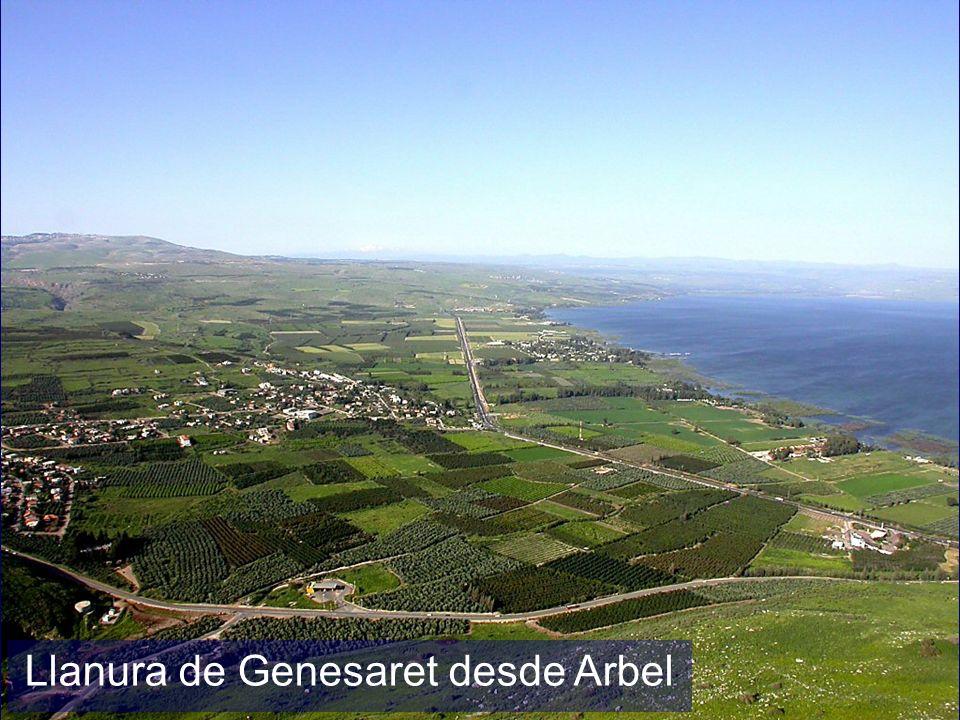 Llanura de Genesaret desde Arbel