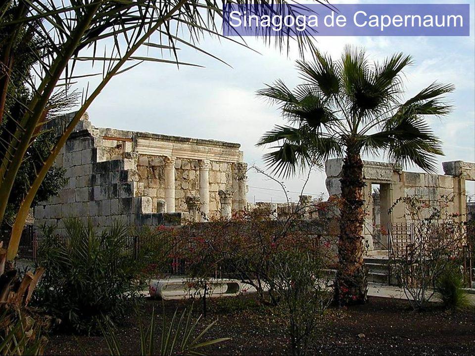 Sinagoga de Capernaum