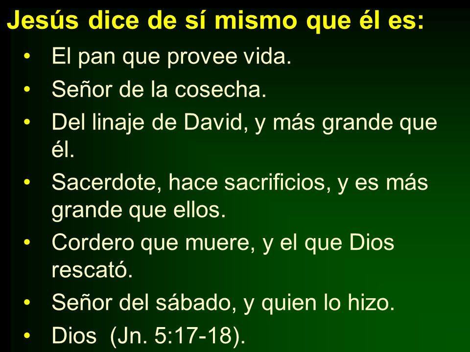 Jesús dice de sí mismo que él es: El pan que provee vida. Señor de la cosecha. Del linaje de David, y más grande que él. Sacerdote, hace sacrificios,