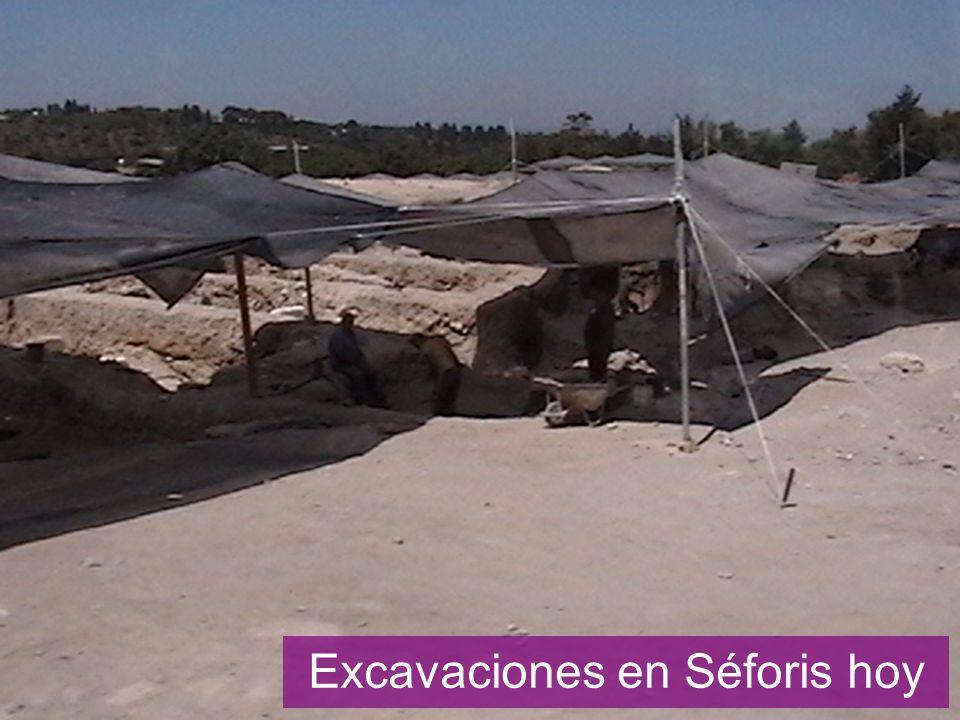 Excavaciones en Séforis hoy