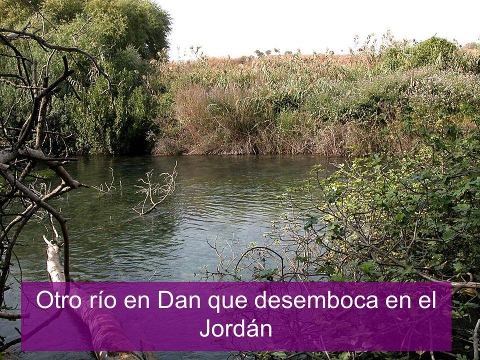 Otro río en Dan que desemboca en el Jordán