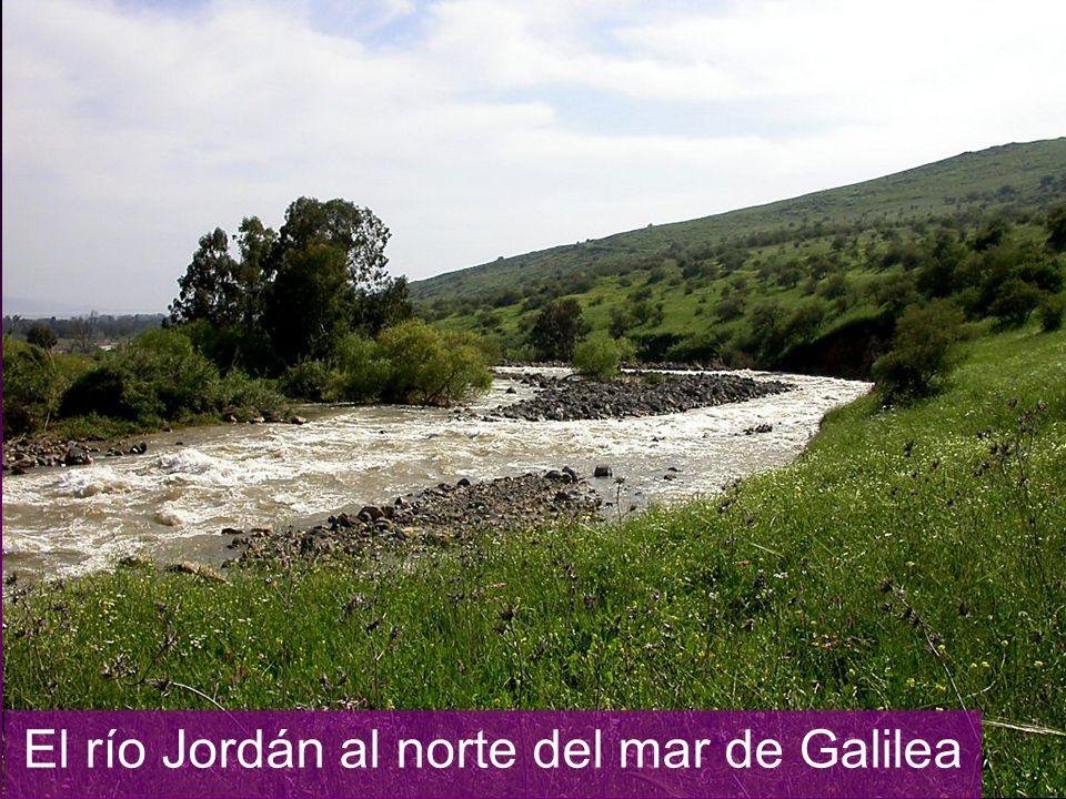 El río Jordán al norte del mar de Galilea
