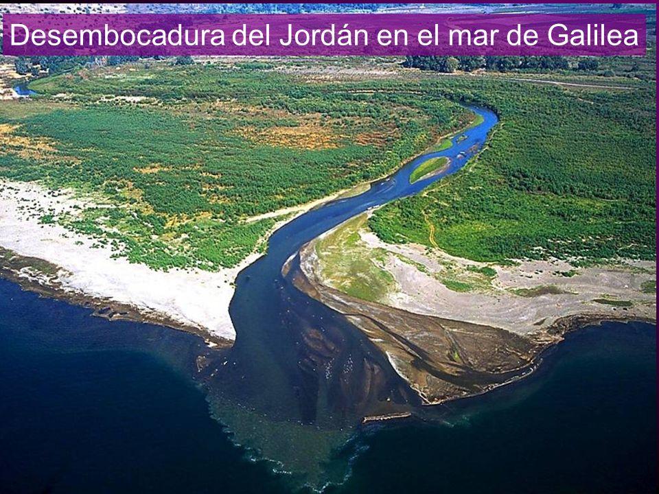 Desembocadura del Jordán en el mar de Galilea