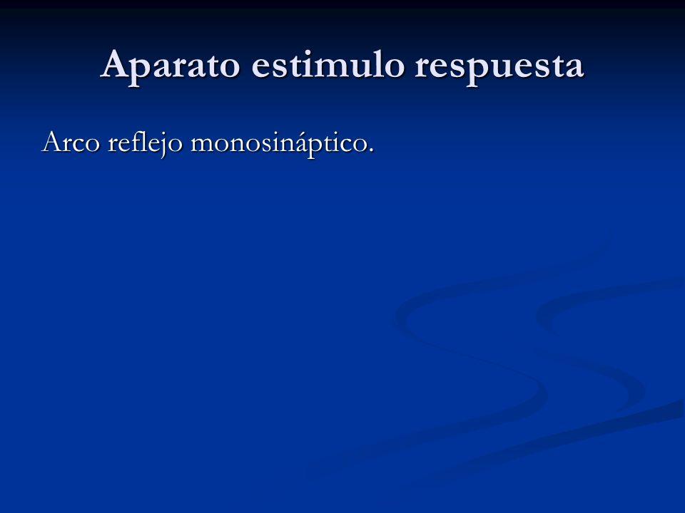 Aparato estimulo respuesta Arco reflejo monosináptico.
