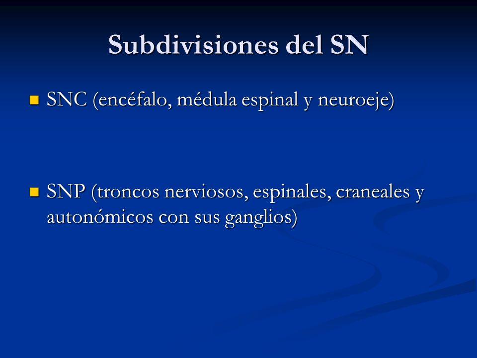 Subdivisiones del SN SNC (encéfalo, médula espinal y neuroeje) SNC (encéfalo, médula espinal y neuroeje) SNP (troncos nerviosos, espinales, craneales