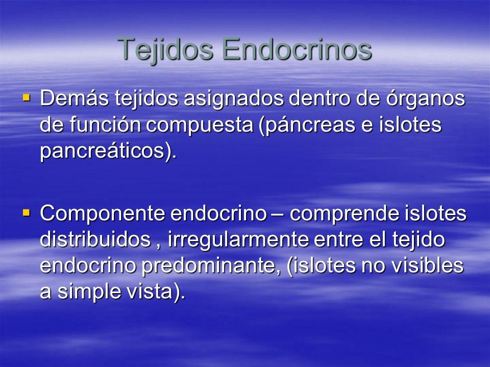 Tejidos Endocrinos Demás tejidos asignados dentro de órganos de función compuesta (páncreas e islotes pancreáticos). Demás tejidos asignados dentro de